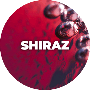 Buy Shiraz